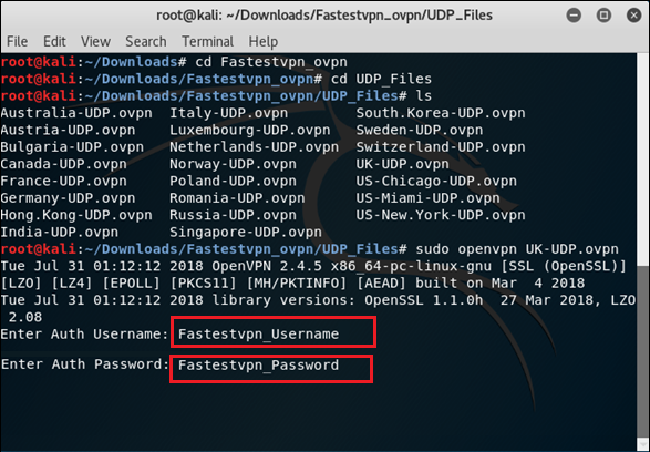 Kali Linux Open VPN TCP UDP